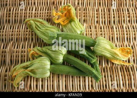 Bodegón con flores de calabacín Imagen De Stock