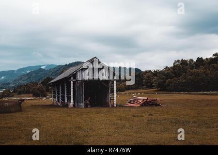 Paisaje con campos agrícolas, construcción Francenigo abandonados, Veneto, Italia Imagen De Stock