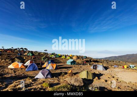 Tiendas de campaña en el campamento Umbwe con vista del Monte Meru, 4565m, el Parque nacional Kilimanjaro, Sitio del Patrimonio Mundial de la UNESCO, Tanzania, África oriental, África Imagen De Stock
