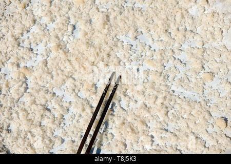 Los palillos en un plato de arroz Imagen De Stock