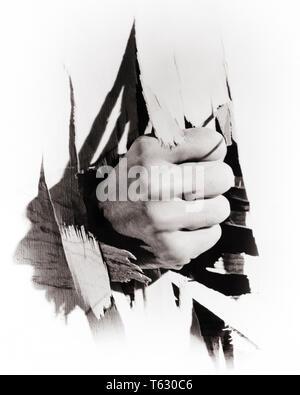 1930 simbólica masculina mano puño perforado a través de la pared de madera - s10951 HAR001 HARS poderosa huelga ZANY AUTORIDAD poco convencional concepto Conceptual perforado cerca escapar contundente WACKY violentos idiosincrásicas divertido excéntrico conceptos simbólicos Mediados de-adulto hombre adulto medio en blanco y negro de diverso origen étnico caucásico erráticas manos sólo HAR001 ANTIGUA REPRESENTACIÓN INDIGNANTE Imagen De Stock