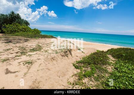 Vista de la playa durante el día Imagen De Stock