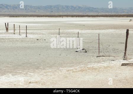 Costra de sal de Soda Lago en la Falla de San Andreas, Carrizo Plain Monumento Nacional, California. Fotografía Digital. Imagen De Stock