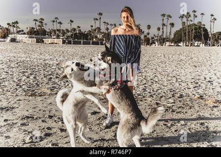 Mujer joven viendo perros playfighting en la playa Imagen De Stock