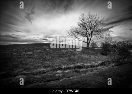 Paisaje espectacular imagen de un ominoso cielo detrás de una pequeña colina con un solo árbol deshojado, Imagen De Stock