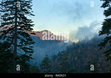 Niebla de la mañana se cuelga en el valle con la caída de color en alta montaña, Great Smoky Mountains National Park, Tennessee Imagen De Stock