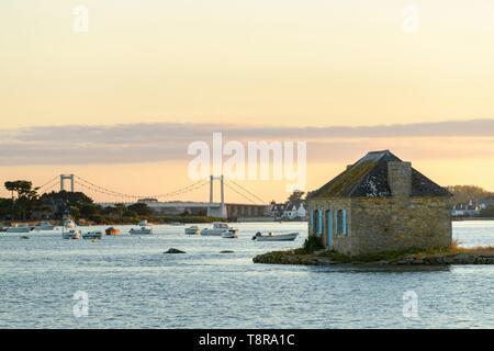 Francia, Morbihan, Belz, Nichtarguer isla en río Etel al atardecer Imagen De Stock