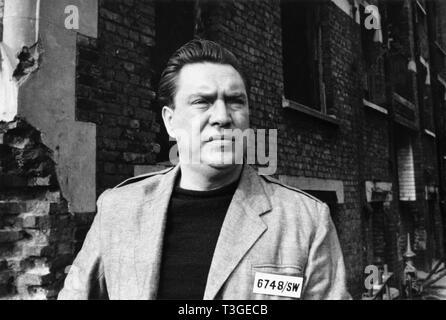 1984 Año: 1956 director británico Michael Anderson: Edmond O'Brien Imagen De Stock