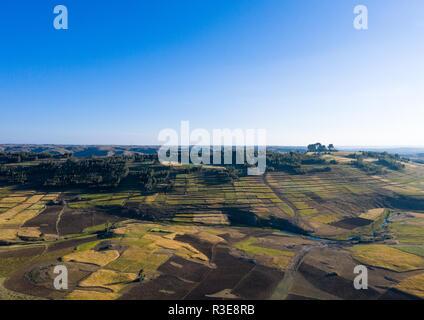 Campos en el Altiplano, región amhara, Etiopía Weldiya Imagen De Stock