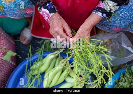 Vista aérea de una mujer sentada en un mercado mantiene las hierbas frescas, Tailandia Imagen De Stock