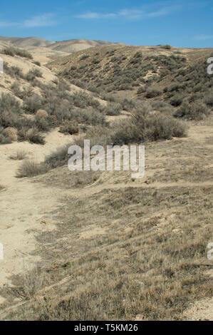 Terremoto de Wallace cama Bent Creek, en la Falla de San Andreas, Carrizo Plain Monumento Nacional, California. Fotografía Digital. Imagen De Stock