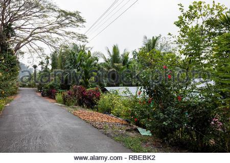 Sobre hotel finca en carretera. Jalakara Villa Hotel, Islas Andamán y Nicoar, India. Arquitecto: Ajith Andagere, 2016. Imagen De Stock