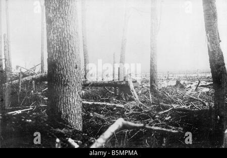 9 1916 3 18 A1 6 E Batalla de Postawy Battlefield 1916 Primera Guerra Mundial Frente Oriental la derrota de las Imagen De Stock