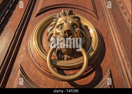 Cabeza de León como puerta puerta de madera vieja de martinete, 1815, Embajada de Italia, Viena, Austria Imagen De Stock