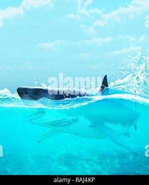 Tiburón bajo el agua,3d ilustración Imagen De Stock