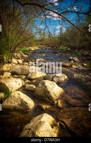 Un pequeño arroyo, apresurándose fluye alrededor de grandes piedras en el bosque. Imagen De Stock