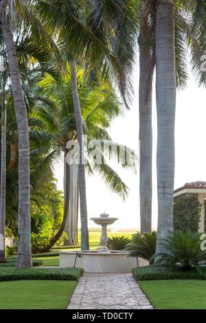 Palmeras y una fuente en el espacio exterior en el lado de la casa de lujo, Naples, Florida, EE.UU. Imagen De Stock