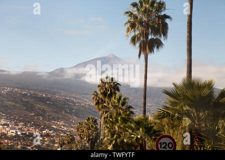 Teide, Tenerife, Islas Canarias, España Imagen De Stock