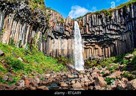 Hermosa cascada Svartifoss en Islandia Imagen De Stock