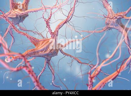 Las neuronas y el sistema nervioso. 3D Render de células nerviosas. Ilustración 3D Imagen De Stock