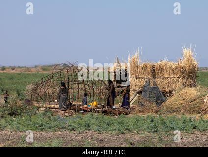Afar gente construyendo una choza, la región de Afar, en Etiopía, Afambo Imagen De Stock