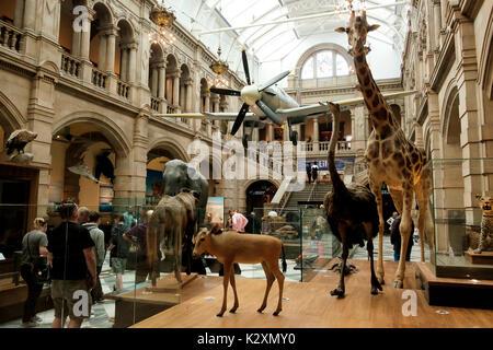 Diversas exposiciones en la Galería de Arte y Museo Kelvingrove, Glasgow Imagen De Stock
