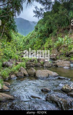 Hawaii, Valle Kalalau, Kauai Napali, Costa Napali State Park Imagen De Stock