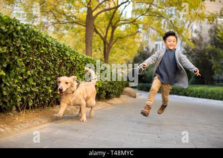 Niñito ejecuta con perro Imagen De Stock
