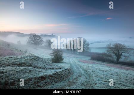 Una helada, Misty dawn sobre Milborne Vartenham Hill, Puerto, Somerset, Inglaterra, Reino Unido. Imagen De Stock