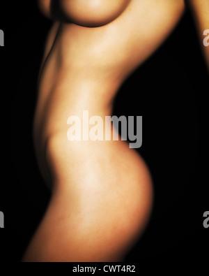 Una ilustración foto-realista de un desnudo, el Cáucaso torso femenino. Imagen De Stock
