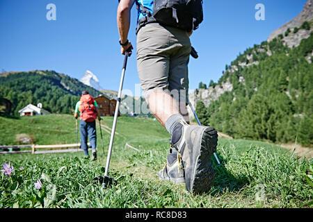Excursionistas en la exuberante campo verde, chalets en antecedentes, Mont Cervin, Cervino, Valais, Suiza Imagen De Stock