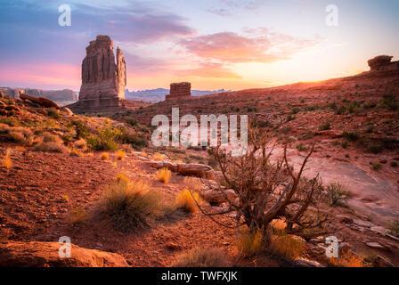 El Órgano formación rocosa y Park Avenue Trail, Parque Nacional Arches, en Utah, Estados Unidos Imagen De Stock