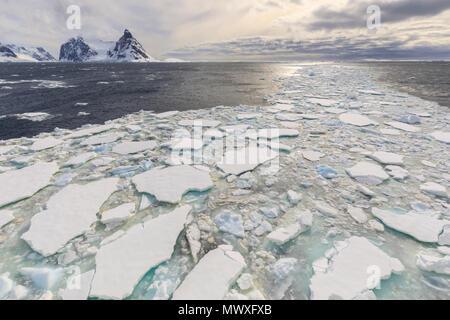 El hielo marino y la entrada del Canal Lemaire, entre la Península de Kiev y la Isla Booth, luz del atardecer, en la Península Antártica, en la Antártida, las regiones polares Imagen De Stock