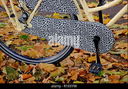 Señoras bicicleta y hojas de otoño, Cambridge, Inglaterra. Imagen De Stock