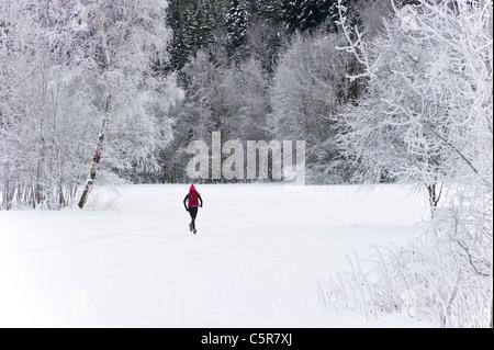 Un jogging corre a través del bosque cubierto de nieve. Imagen De Stock