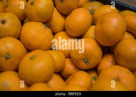 Fondo brillante de mandarinas naranja madura Imagen De Stock