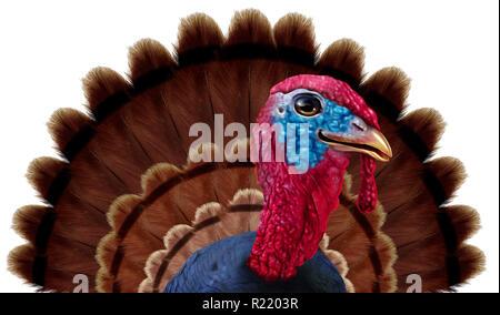 Plumas de pavo de Acción de Gracias como un carácter de cierre de temporada de otoño funny bird icono en un fondo blanco con ilustración 3D elementos. Imagen De Stock