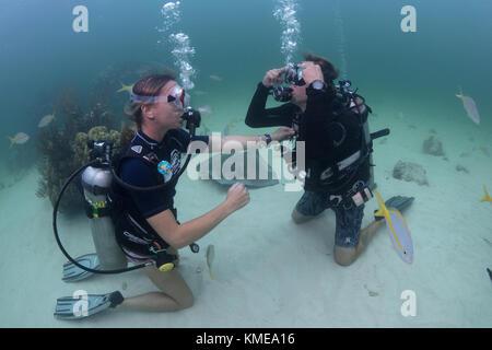 Los buceadores realizar borrado máscara habilidades en las aguas poco profundas de Stingray City, Gran Caimán Imagen De Stock