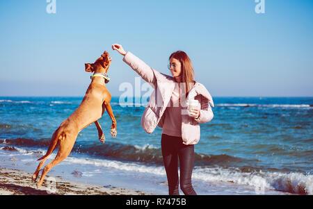 Mitad mujer adulta en la playa jugando con su perro, Odessa, Odeska Oblast, Ucrania Imagen De Stock