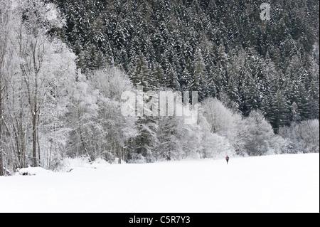 Emparejador corre a través de impresionantes paisajes de invierno con nieve. Imagen De Stock