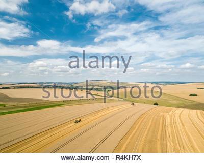 Antena de cosecha paisaje de verano de corte de cosechadora de cosechas en el campo de trigo con un tractor remolque bajo un cielo azul en la granja Imagen De Stock