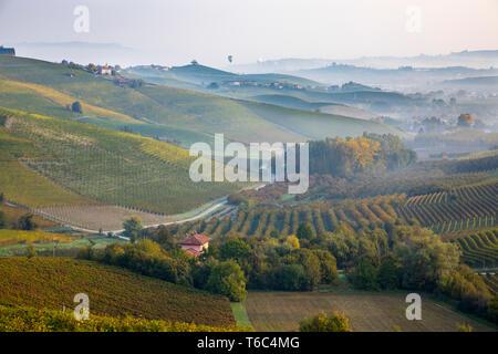 Italia, Piamonte (Piemonte), Distrito de Cuneo, Langhe, globos aerostáticos volando sobre valle al amanecer. Imagen De Stock