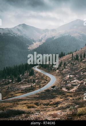 Sinuoso camino a través del bosque, Aspen, Colorado, EE.UU. Imagen De Stock