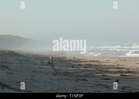 Playa de Surf cerca de Lompoc, California central coast. Fotografía Digital. Imagen De Stock