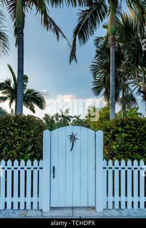 Valla y puerta de madera con palmera cuarteado, Naples, Florida, EE.UU. Imagen De Stock