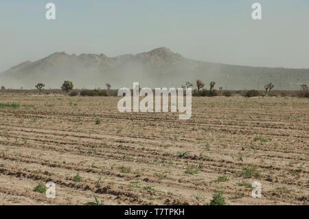 La sequía de los campos áridos en el Antelope Valley, California, en 2014. Fotografía Digital. Imagen De Stock