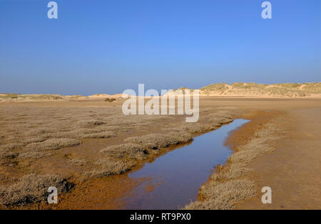 Holkham Beach, North Norfolk, Inglaterra Imagen De Stock