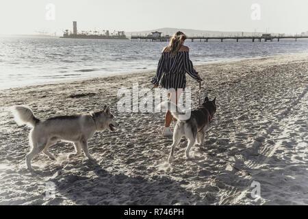 Mujer joven pasear los perros en la playa Imagen De Stock