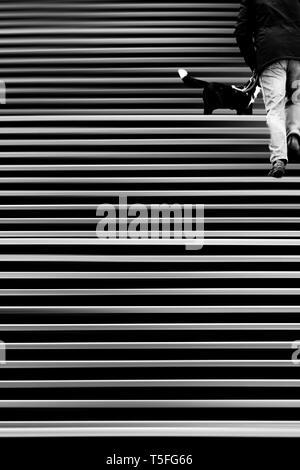 El montage abstracto de una escalera donde un hombre camina con su perro. Imagen De Stock