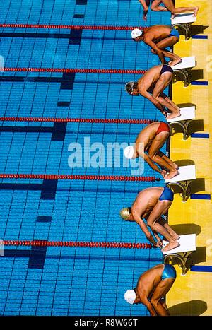 Los nadadores al inicio de la carrera Imagen De Stock